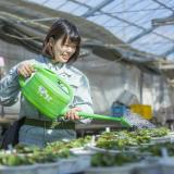 オンライン体験入学【造園緑地科】の詳細