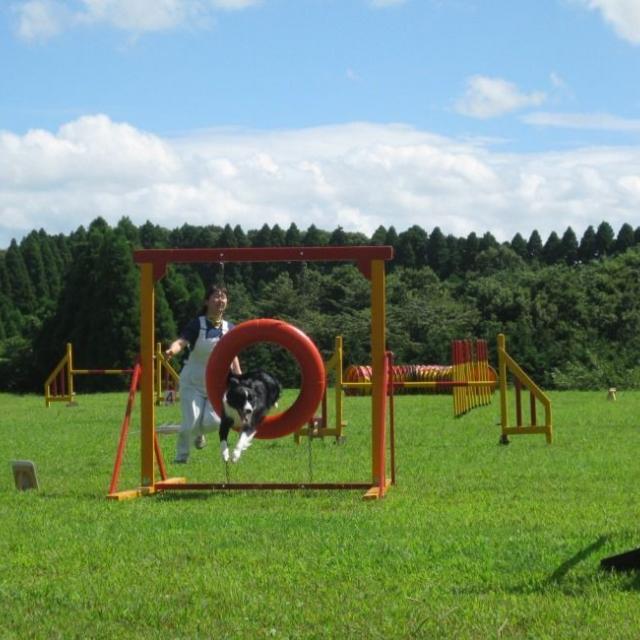 専門学校ちば愛犬動物フラワー学園 8/7(火)コース別オープンキャンパス2