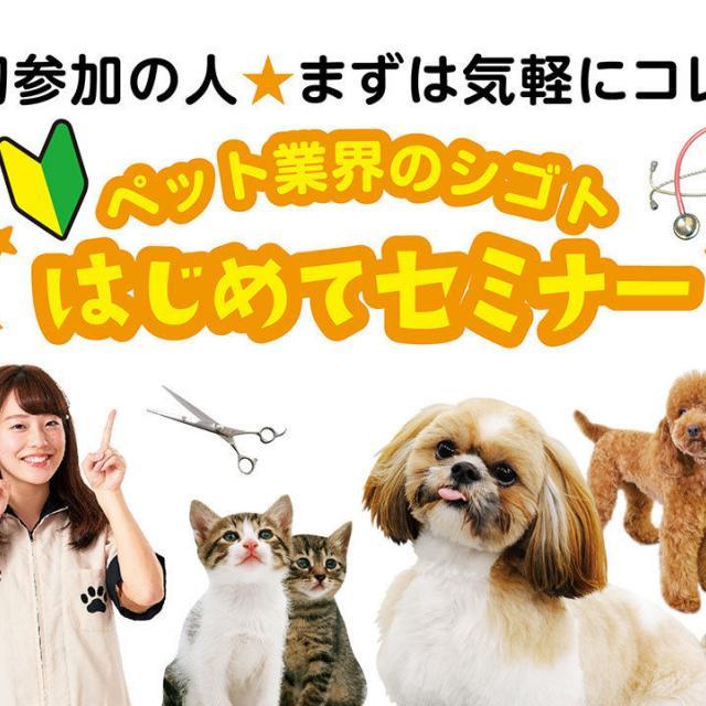 大阪ビジネスカレッジ専門学校 まずは気軽にこれ♪ペット業界のシゴトはじめてセミナー !1
