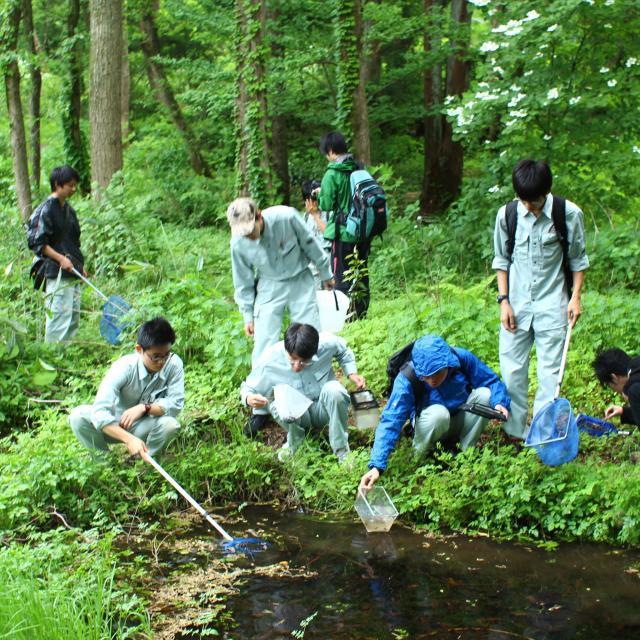 日本自然環境専門学校 【自然環境調査】を学ぶなら!1
