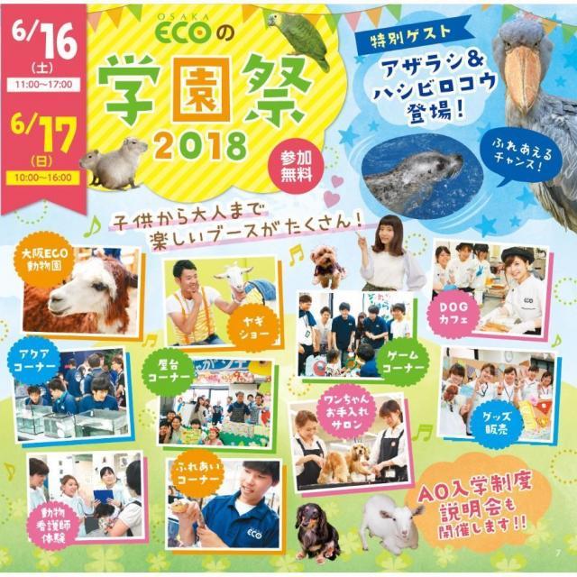 大阪ECO動物海洋専門学校 大阪ECO 学園祭2018 【 6月16日・17日限定 】 2