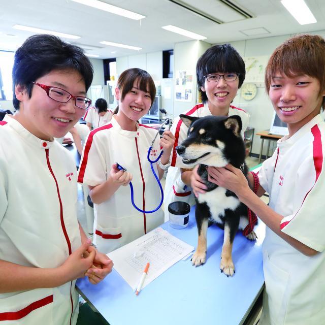 日本動物専門学校 ♪オープンキャンパス☆1