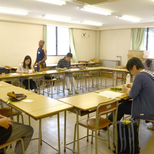 日本ガーデンデザイン専門学校 葉っぱの形で覚えよう いろんな樹木の名前2