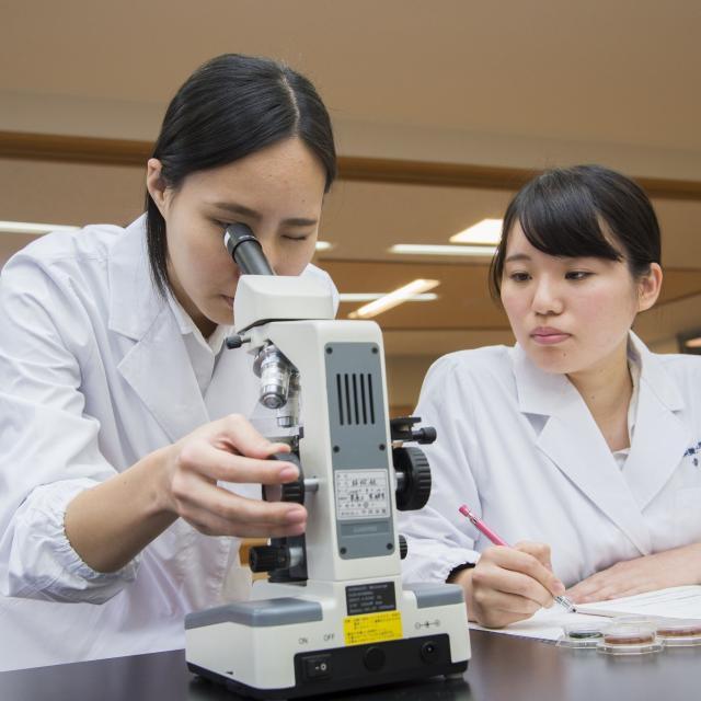 平岡栄養士専門学校 【調理もできる栄養士を目指す!】オープンキャンパス案内3