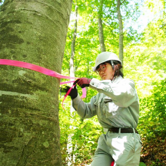 日本自然環境専門学校 森林の中で働きたい!森を守りたい!3