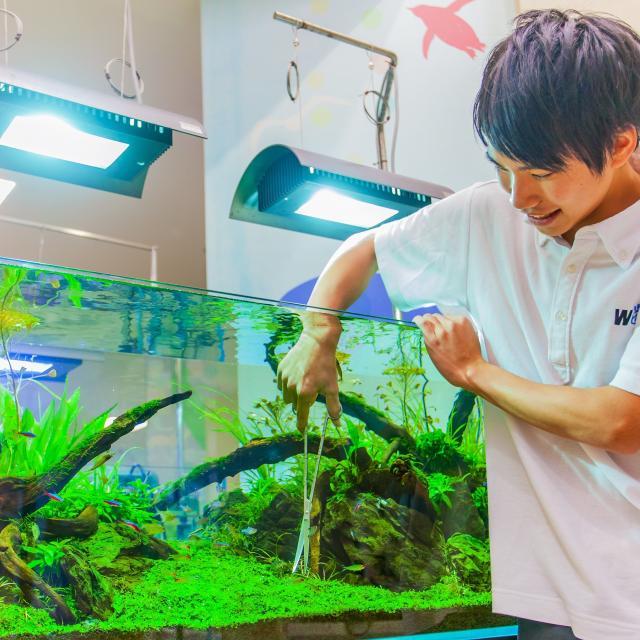 国際ペットワールド専門学校 WaNオープンキャンパス★動物業界を体験♪3