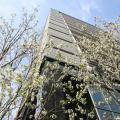 日本大学 【経済学部】WEBオープンキャンパス