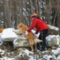 専門学校ビジョナリーアーツ 1/27(日) 災害救助犬トレーニングに挑戦!