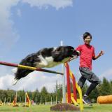 【ドッグトレーナーお仕事体験!】エコの動物たちと触れ合える!の詳細
