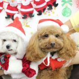 クリスマスイベントの詳細