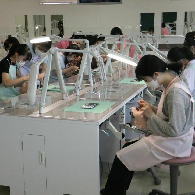 専門学校名古屋デンタル衛生士学院 チカラではなくコツが必要です手用スケーラーの体験1