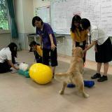 家庭犬のしつけトレーニング体験♪【動物飼育トレーニング学科】の詳細