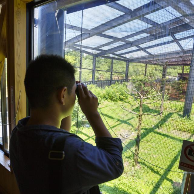 【1泊2日体験ツアー】宮大工を目指す環境をじっくり体験!