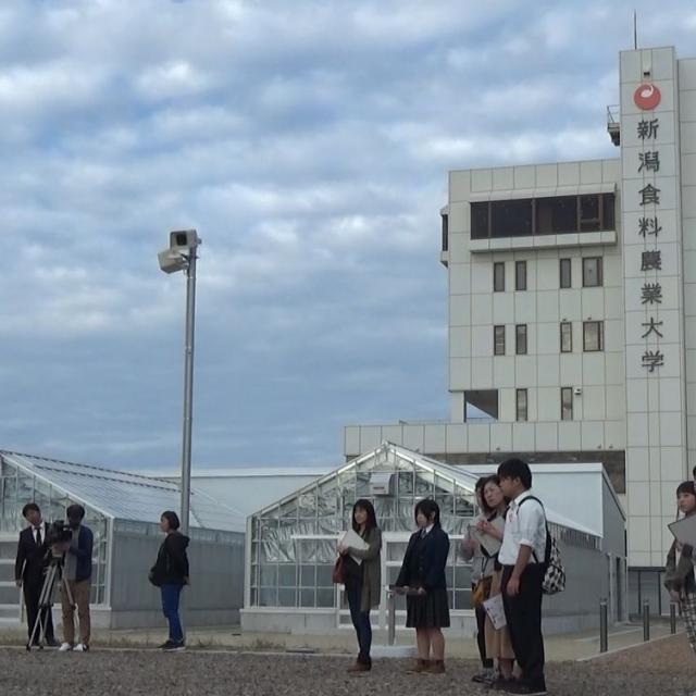 新潟食料農業大学 8/4(土)・5(日)オープンキャンパス開催!3