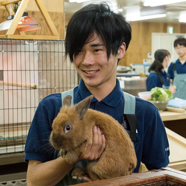 東京コミュニケーションアート専門学校 飼育実習室で実践して学ぶ!動物園飼育員体験1
