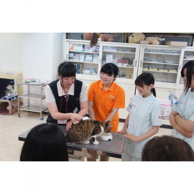 盛岡ペットワールド専門学校 動物好きあつまれ!WANCo☆オープンキャンパス1