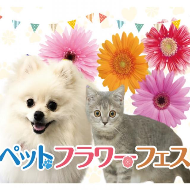 大阪ビジネスカレッジ専門学校 ペット・フラワーフェス1