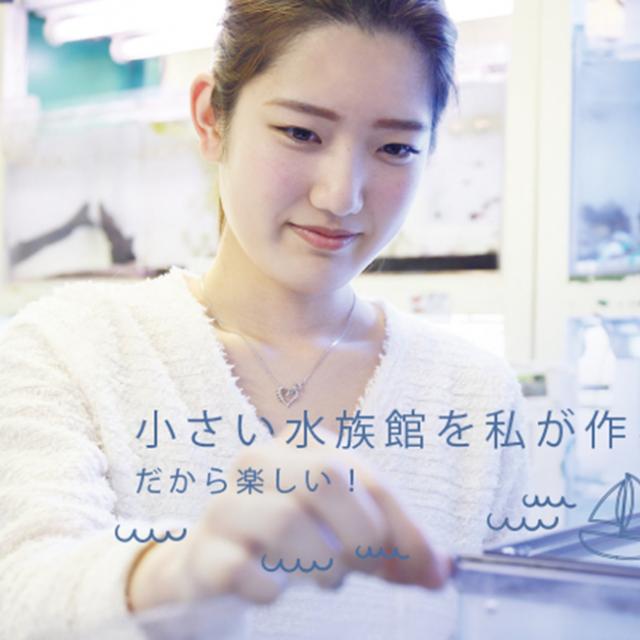 大阪動植物海洋専門学校 水槽レイアウトのプロになろう!【アクアライフコース】1
