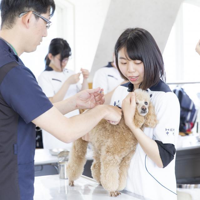 北海道どうぶつ・医療専門学校 【WEB開催】 オンラインオープンキャンパス4