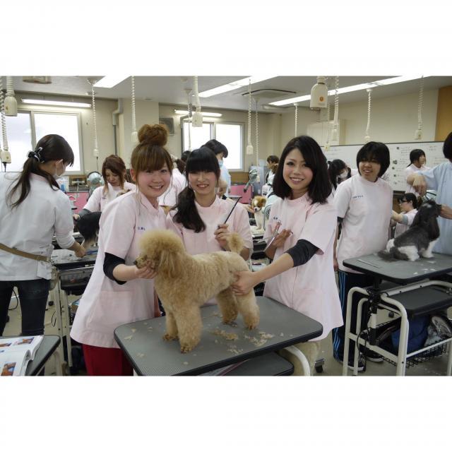 穴吹動物専門学校 体験メニュー豊富!在校生がしっかりサポートするので安心です!1