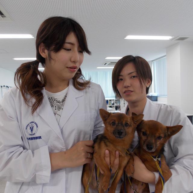 九州動物学院 第4回 飼い主さんと動物と獣医師を繋ぐ! 3
