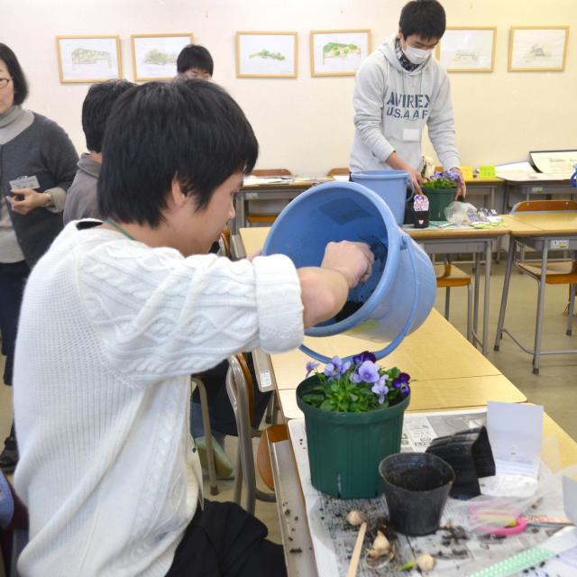 日本ガーデンデザイン専門学校 春が待ち遠しい 長~く楽しむ寄せ植え4