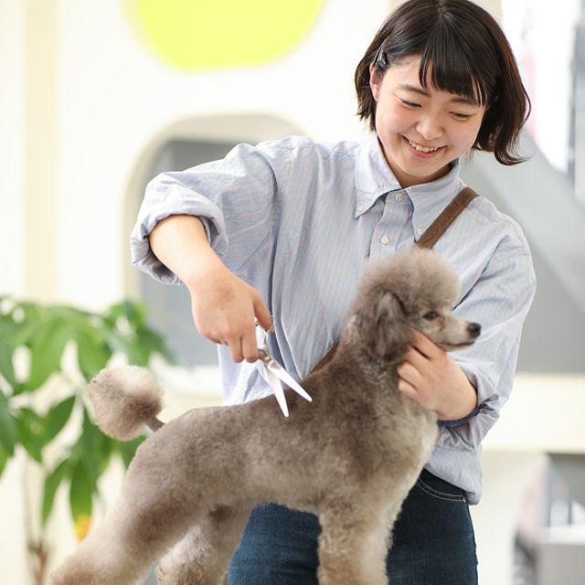 高崎動物専門学校 オープンキャンパス☆ペットのお仕事まるわかり体験2