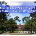 NIC International College in Japan 東京校・海外進学ガイダンス(学校説明会)