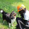 専門学校 福岡ビジョナリーアーツ 8/8(水)警察犬&災害救助犬トレーナー体験