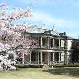オープンキャンパス「春の進学相談会」の詳細
