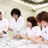 大阪ビジネスカレッジ専門学校 動物看護師のお仕事体験~血液検査に挑戦!~