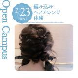 編み込みヘアアレンジ体験の詳細