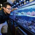 水族館アクアリストの お仕事/TCA東京ECO動物海洋専門学校