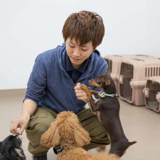 大阪ECO動物海洋専門学校 ドッグトレーナーのお仕事体験【家庭犬】2