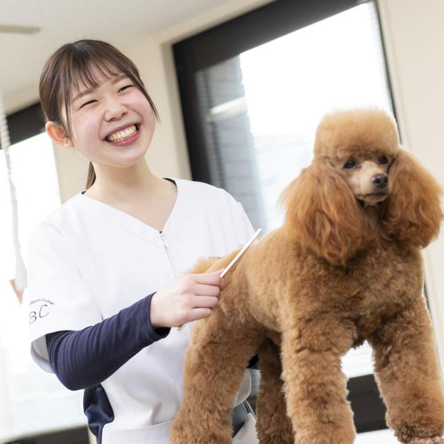 専門学校岡山ビジネスカレッジ 愛犬美容・看護学科オープンキャンパス1