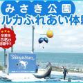 大阪ECO動物海洋専門学校 【高校2年生限定】みさき公園イルカふれあい体験!(軽食付き)