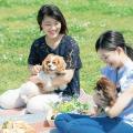専門学校 福岡ビジョナリーアーツ 7/1(日)ワンコと一緒にピクニック