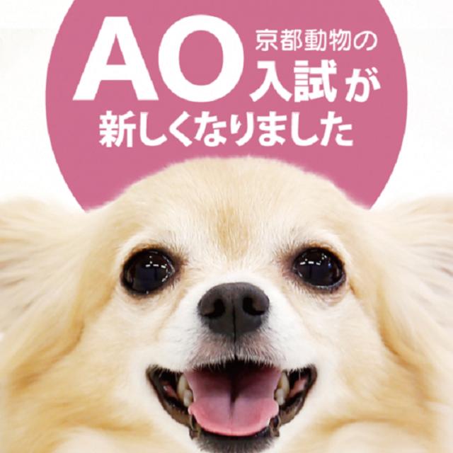 京都動物専門学校 AOまるっと説明会~AO入試が新しくなります~1