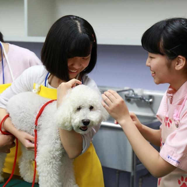 ヤマザキ動物専門学校 合同説明会+体験入学1