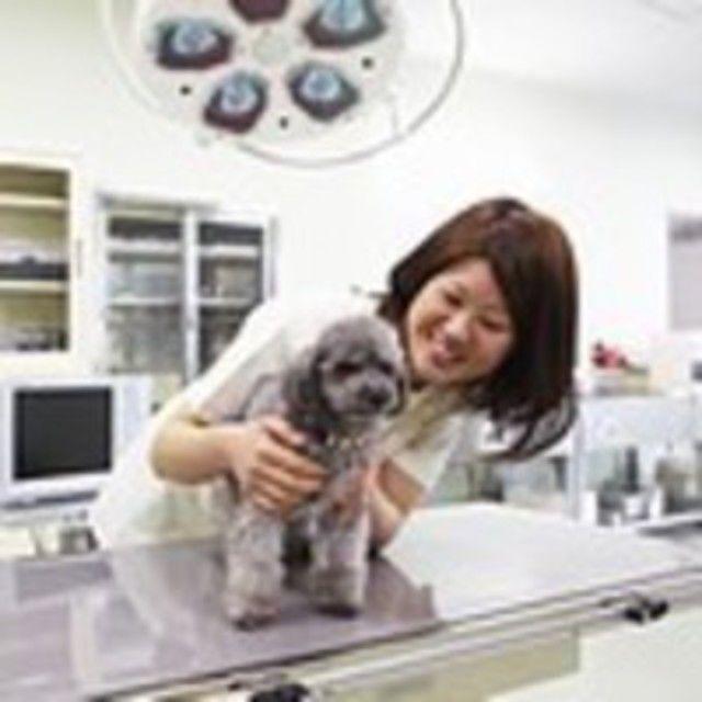 【D:動物看護師★体験】投薬・検温・脈拍・ペットの健康診断☆