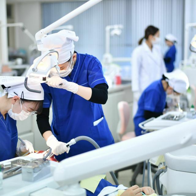 東邦歯科医療専門学校 歯科衛生士学科【午前の部】器具を使って歯面を磨いてみよう!3