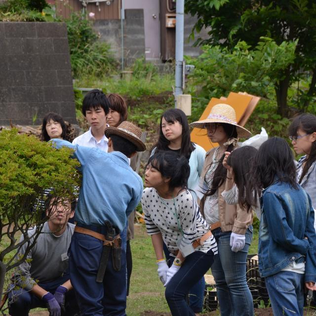 日本ガーデンデザイン専門学校 在校生がエスコート 樹木の剪定1