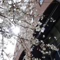 文京学院大学 3/23(Sat)、オープンキャンパス開催<本郷>