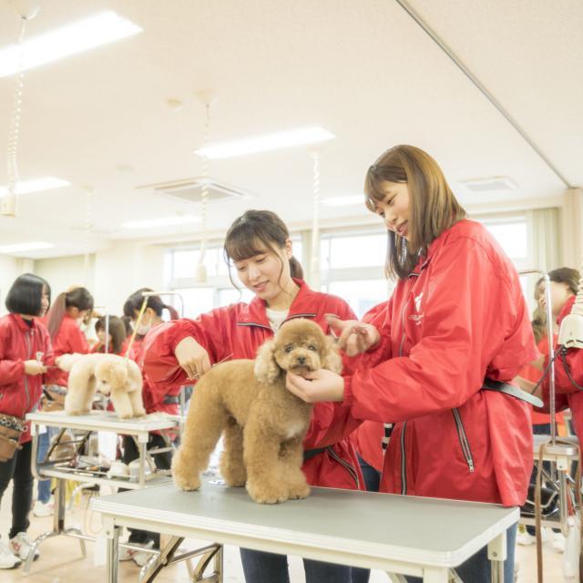岡山理科大学専門学校 オープンキャンパス20191