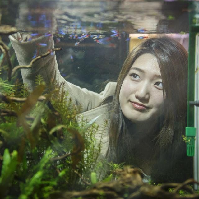 大阪動植物海洋専門学校 水槽レイアウトのプロになろう!【アクアライフコース】2