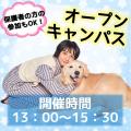 ★オープンキャンパス★/名古屋動物専門学校