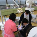 歯科衛生士科 模型についた歯石を機械できれいにとってみよう!の詳細