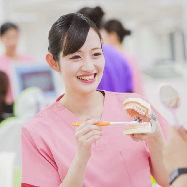 東京医薬専門学校 歯形の材料でいろんな型をとってみよう!歯科アシスタント体験★3