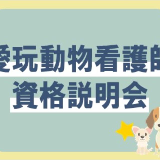 大阪ビジネスカレッジ専門学校 愛玩動物看護師資格 説明会1