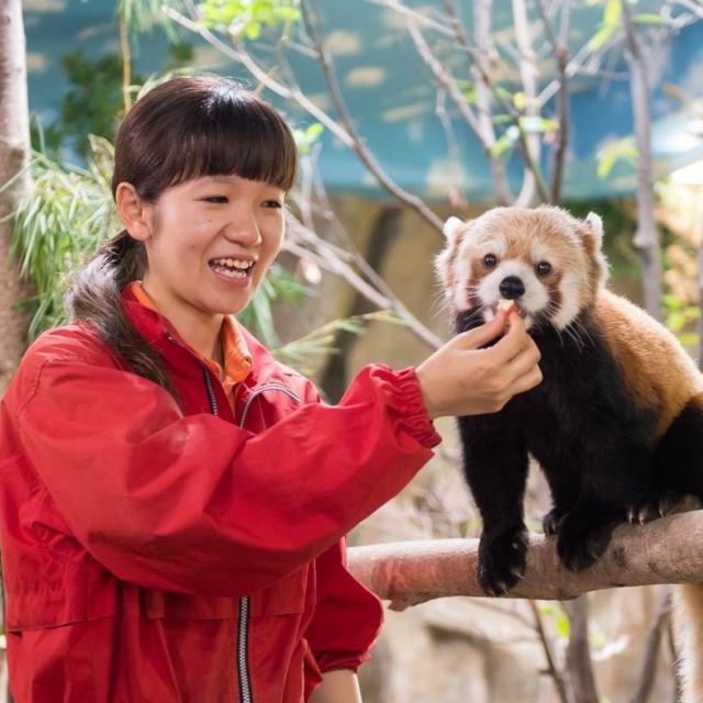 仙台ECO動物海洋専門学校 動物園・動物飼育のお仕事体験1